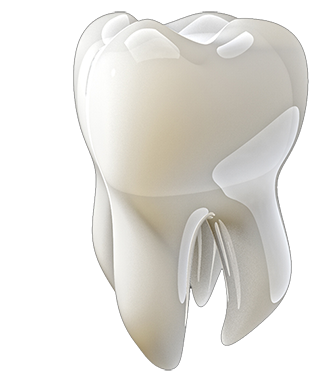 tooth4