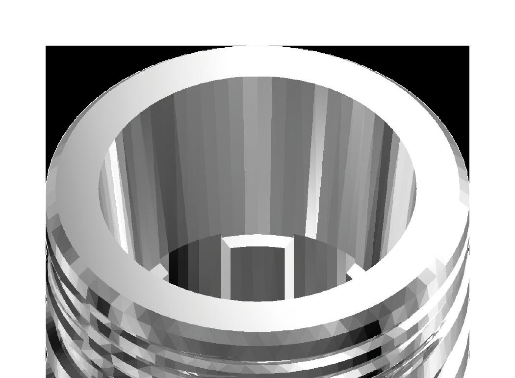 Reprezentare grafica a unei sectiuni intr-un implant dentar Inno